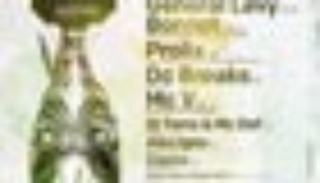 IDM flyer 70