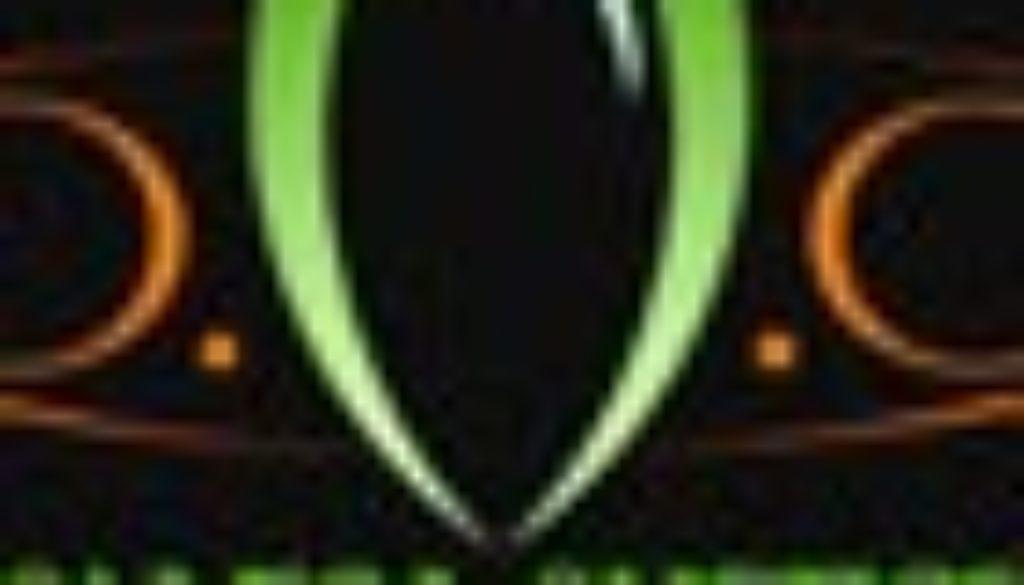 o vega logo new 70