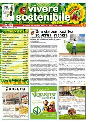 VIS-giugno-2014 300