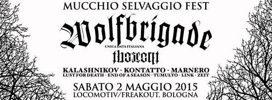 freakout 2maggio-2015 550