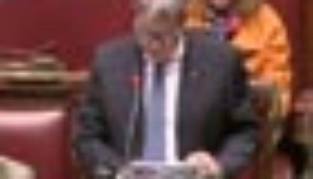 molea parlamento 70
