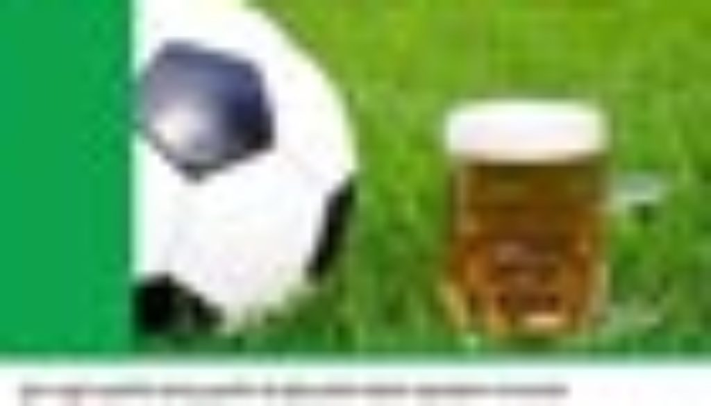 Torneo-birra-2015 70