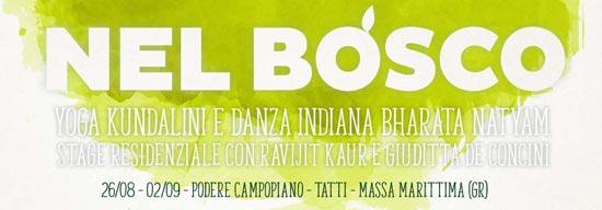 BANNER-Nel Bosco 550