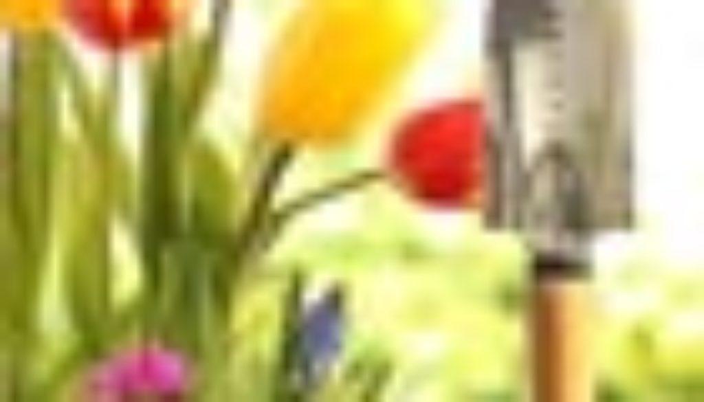 giardinaggio-70