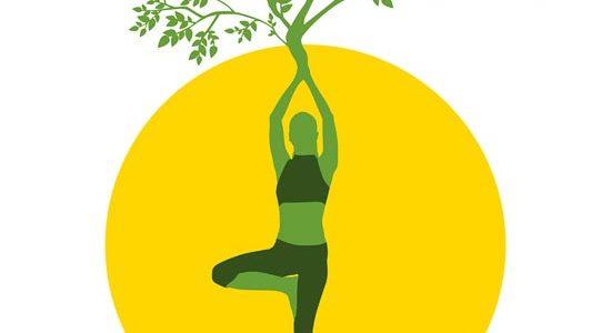 SoleyLuna Yoga 2019/2020