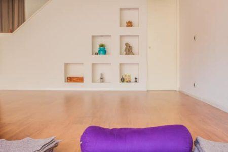 Lezioni Online di Vinyasa Yoga Bologna