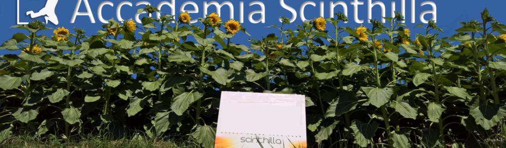 L'Accademia Scinthilla riparte