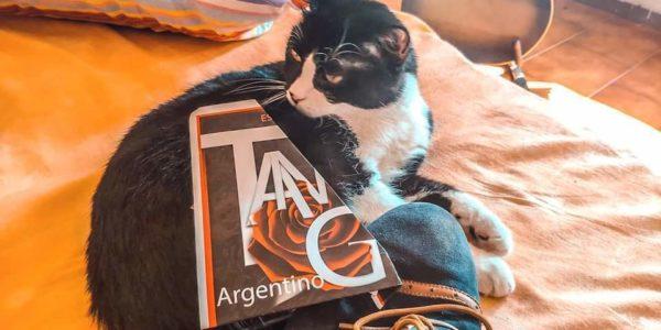 Corsi di Tango Argentino Queer a Bologna