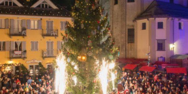 Wanda Circus: proposte per le feste di Natale 2021